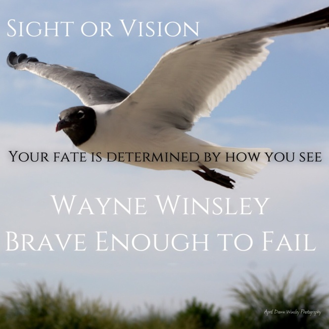 Sight or Vision